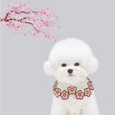 또앙(DDOANG) 봄봄케이프 핑크(M)