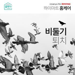 [홈케어] 비둘기 배설물 청소