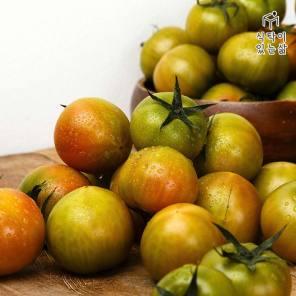 강레오의 선택! 대저 짭짤한 토마토 실중량 2.5kg (소/특상/5,6,7번)