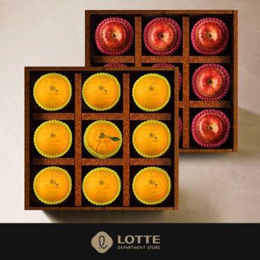 名品 사각박스 사과,한라봉 2단구성 프리미엄 선물세트