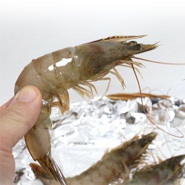전남 신안 친환경 생물 흰다리 새우 1kg 30-40미내