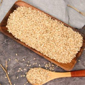 [부지런한 농부] 청정지역 고흥 저아밀로스쌀 현미쌀 5kg