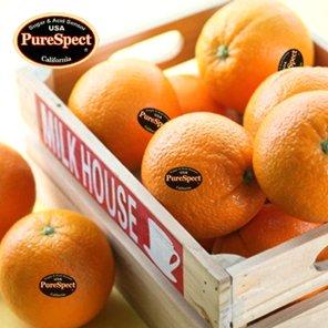 퓨어스펙 블랙라벨 고당도 오렌지 (2.3kg/15과 이내)